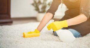 Limpiadores de alfombras
