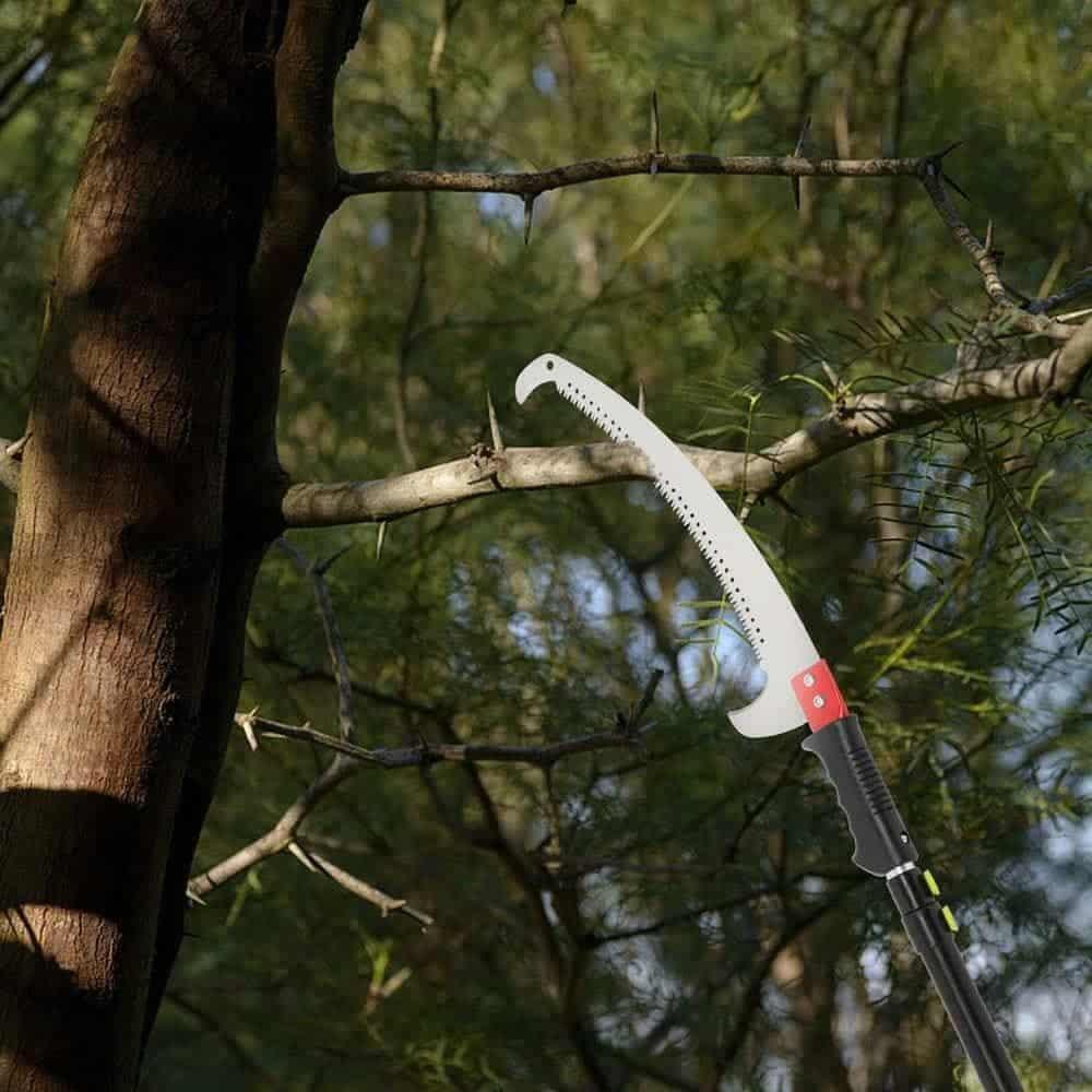 Podadoras de árboles